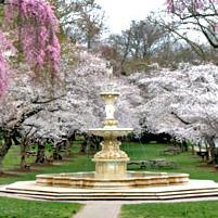 Josephine Fountain & Gardens