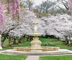 Brandywine Park